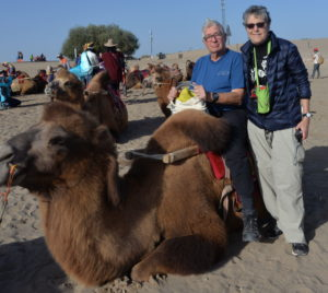 RIch JoAnn and Camel